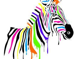 zèbre multicolore (1)